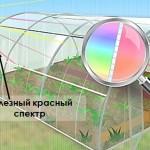 Теплицу из поликарбоната Уралочка